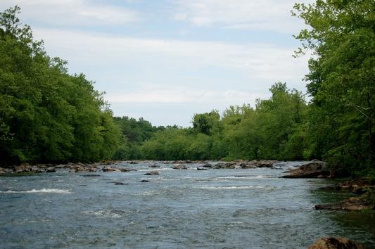 rapp river 1